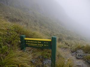 New Zealand 621